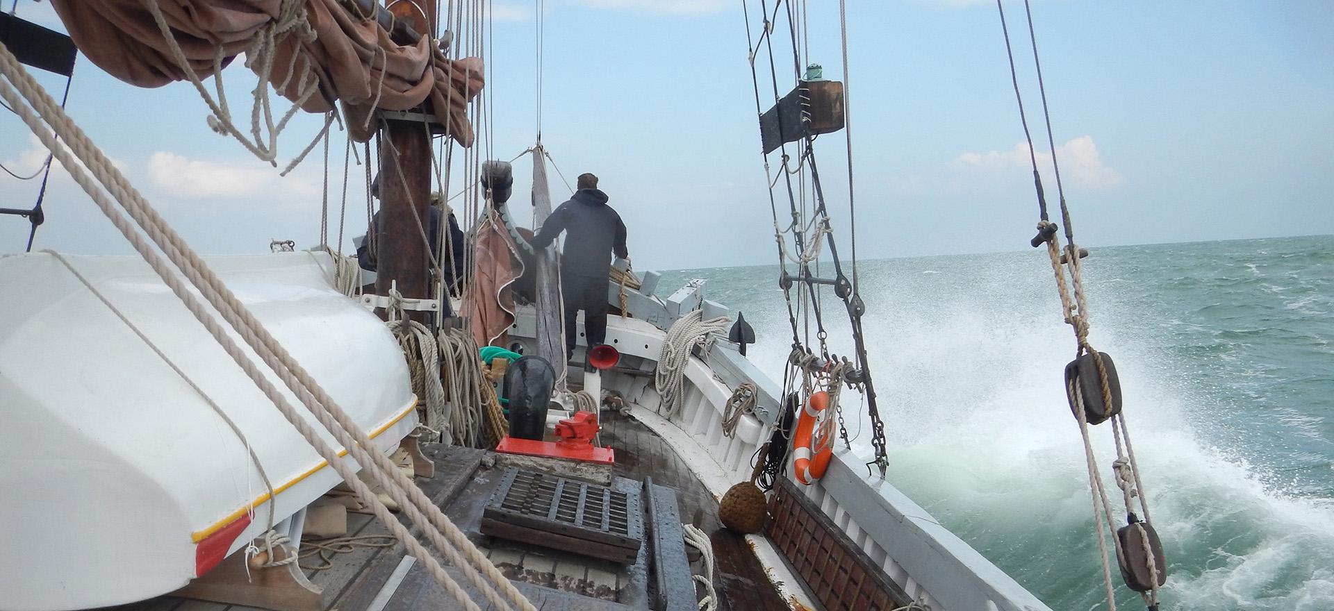 Il Nuovo Trionfo - navigando